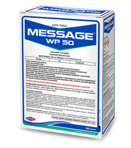 MESSAGE WP 50