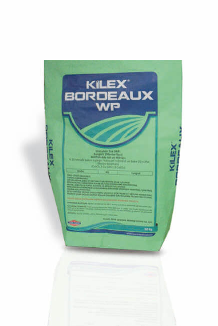 Kilex Bordeaux WP