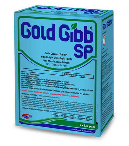 GOLD GİBB SP