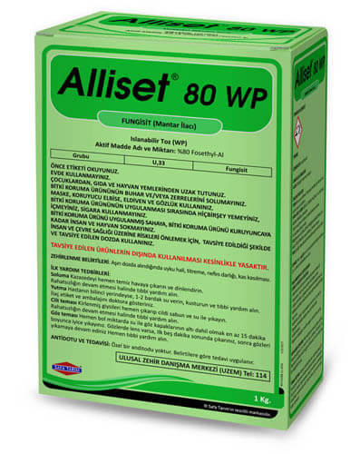 ALLİSET 80 WP